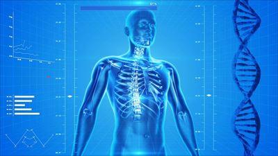 千葉県で整形外科をお探しの方へ'整形外科とはどのような所?'「骨粗しょう症」・「スポーツ障害」・「腰痛」は【田部整形外科】にお任せ!